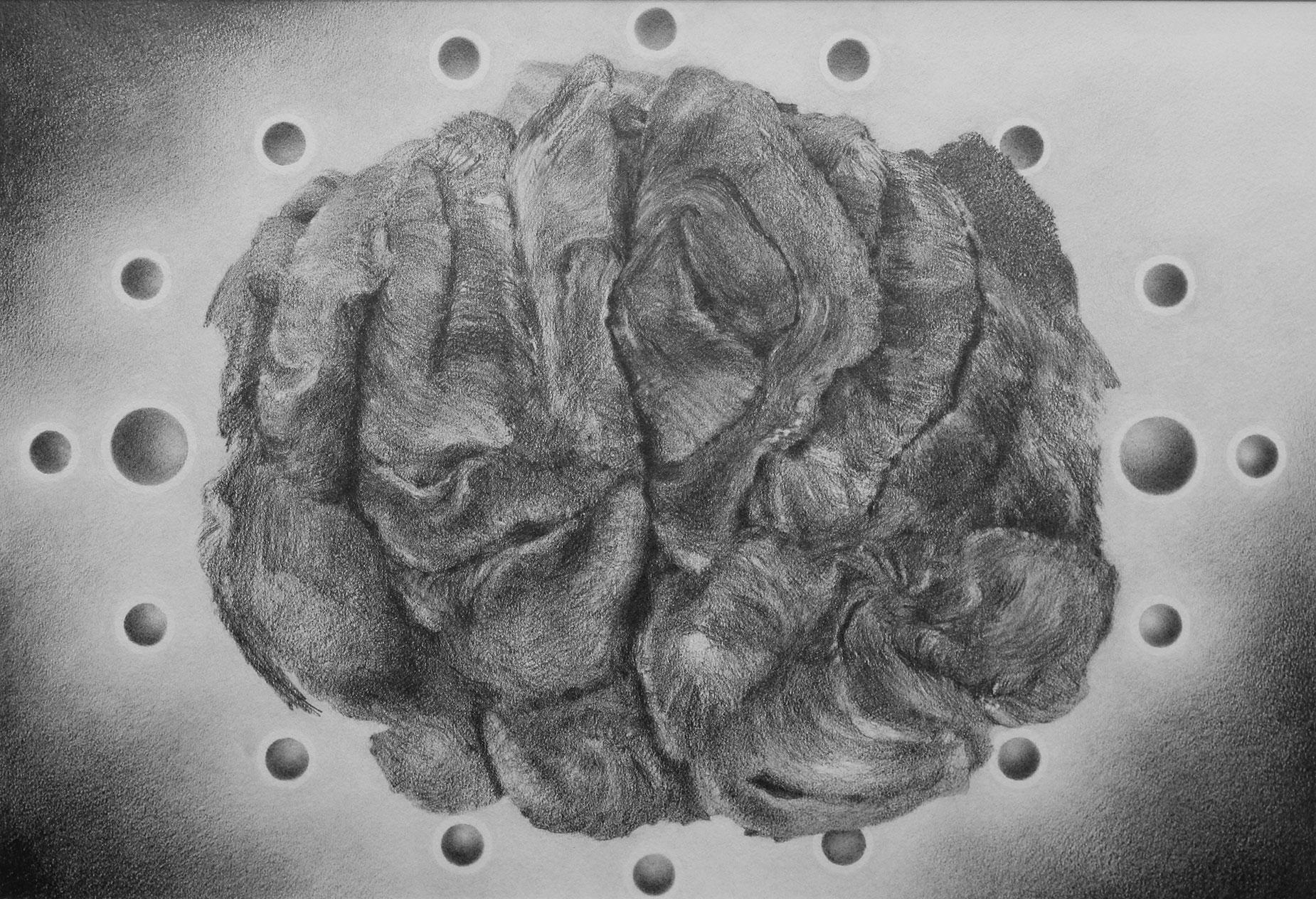 Auspicious Elk - Richard Jacobi Drawings - The Mythologies