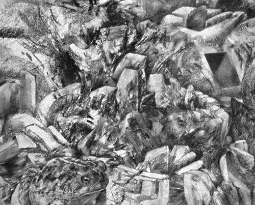 Bufo - Drawings By Richard Jacobi - The Mythologies