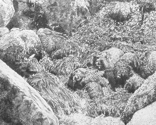 Electric Waterfall - Richard Jacobi Drawings - The Mythologies