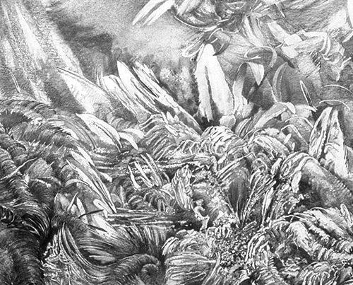 Metamorphosis - Richard Jacobi Drawings - The Mythologies